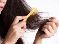 🥇 Tratamiento para cabello seco